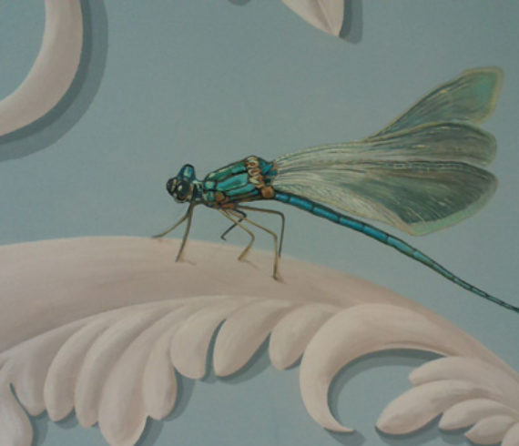 Single dragonfly with gossamer wings