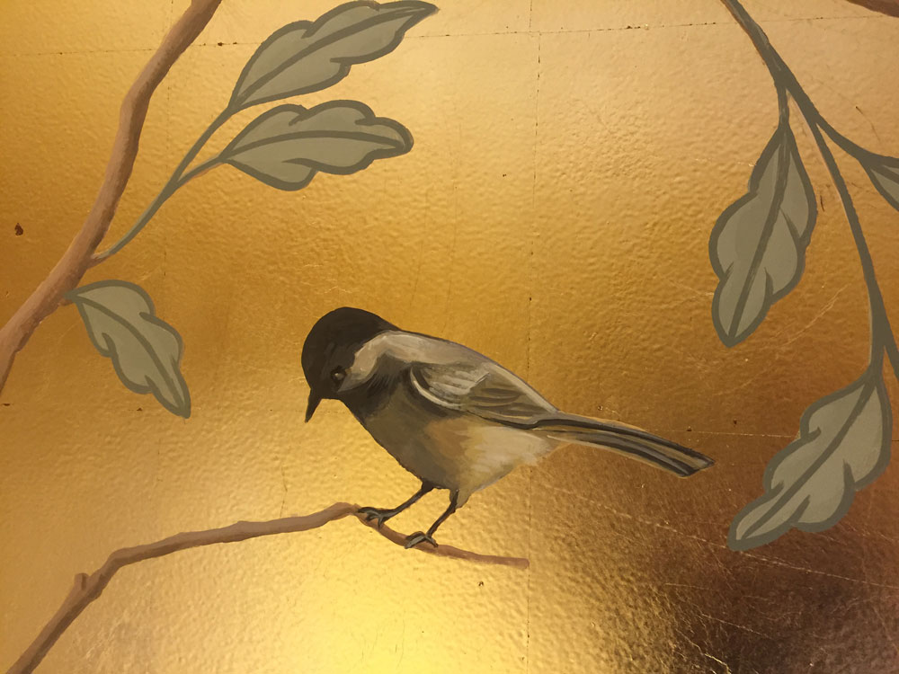 Bird 3 Closeup