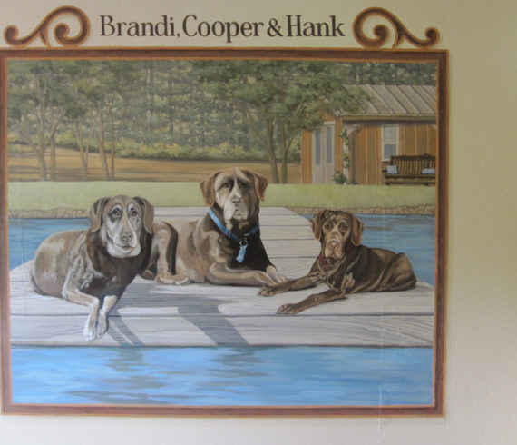Brandi, Cooper and Hank at the pool